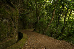 Hiking along levada on Madeira Royalty Free Stock Photo