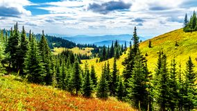Hiking trails on Tod Mountain near the village of Sun Peaks of British Columbia, Canada stock images