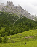 Hiking in the Alpine Regions. A hiker walking across a meadow in the Dolomites in Northern Italy Royalty Free Stock Photos