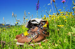 Hiking Alps Stock Image