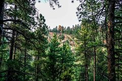 The Amazing Trails in Colorado. Hiking through the amazing Sunshine Canyon Trails in Boulder Colorado Royalty Free Stock Image