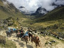 Hiking in the Andes along the Salkantay trail with a group of do royalty free stock photography