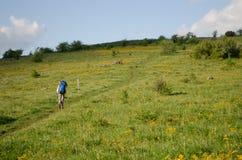 Hiking the Appalachian Trail Royalty Free Stock Image