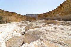 Israeli desert travel. Hiking in arava desert of Israel Royalty Free Stock Image
