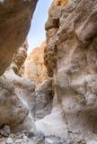 Israeli desert travel. Hiking in arava desert of Israel Stock Images