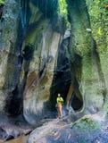 Hiking through the Atlantic Rainforest inside Itaimbezinho Canyon royalty free stock images