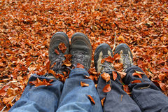 Hiking in autumn. Two pair of legs and hiking shoes, with autumn leafs Royalty Free Stock Images