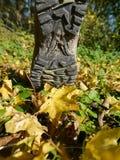 Hiking autumn boot stock image