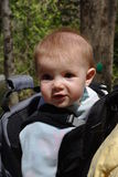 Hiking with baby. Image of a baby in a backpack on a hike through the woods Stock Photography