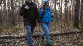Hiking and Backpacking concept. Young Couple of travelers walking in forest in autumn day stock video