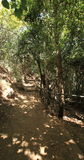 Hiking in the Banias Nature Reserve, Israel Stock Photos