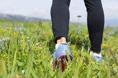 Hiking on beautiful mountain with green grass and flowers royalty free stock photos