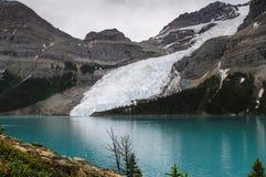 Hiking Berg Lake Trail Royalty Free Stock Photos