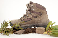Hiking Boot In Nature Royalty Free Stock Images