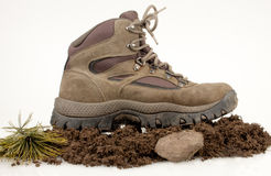Hiking Boot In The Wild Royalty Free Stock Photos