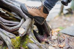 Hiking boot in woods stock photos