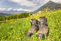 Hiking_boots fotografia de stock