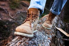 Hiking boots. Close-up. girl tourist steps on a log Royalty Free Stock Photo