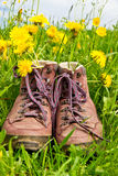 Hiking boots in a meadow Stock Image