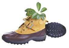 Hiking Boots and Nature Royalty Free Stock Photos