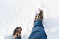 Hiking boots in the snow Stock Image
