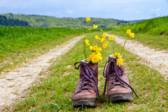 Hiking boots on a way. Hiking boots with flowers on a way in nature Royalty Free Stock Image