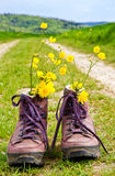 Hiking boots on a way. Hiking boots with flowers on a way in nature Stock Photography