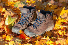 Hiking boots, well worn and muddy on the forest floor Royalty Free Stock Photos