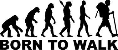 Hiking Born to walk Evolution. Vector stock illustration