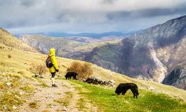 Hiking in Bosnian mountains Stock Photos