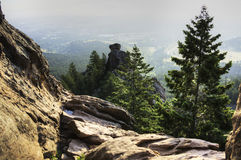 Hiking in Boulder. Colorado in the Morning with Trees and Rocks Stock Photos