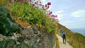 Hiking the Bray to Greystones Cliff Walk Stock Photography