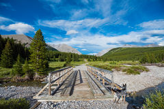 Hiking Bridge. Wooden bridge over a river on a hiking trail in the mountain with a Blue Heeler Dog Stock Photo