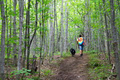 Hiking the Bruce Trail. A Man hiking a path through the forest on the Bruce Trail in Ontario Canada stock photo