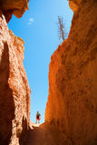 Hiking in Bryce Canyon Royalty Free Stock Photos