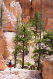Hiking in Bryce Canyon. A woman is hiking through Bruce Canyon in Utah Stock Photos