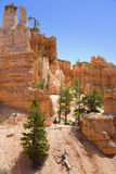 Hiking in Bryce Canyon. A woman is hiking through Bruce Canyon in Utah Royalty Free Stock Photo