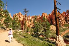 Hiking Bryce Canyon USA Stock Image
