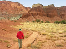 Hiking in Capitol Reef National Park, Utah Royalty Free Stock Photography