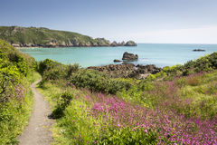 Hiking on the channel islands, Europe. South coast of Guernsey island, UK, Europe Stock Photos