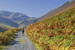 Hiking in Coledale Stock Image