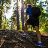 Hiking concept - back view of male hiker with backpack in forest Stock Photography
