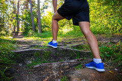 Hiking concept - close up of male legs in sport shoes in forest. Hiking concept - close up of male legs in running shoes in forest Royalty Free Stock Photo