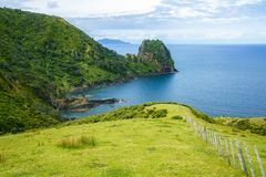 Hiking the Coromandel Coastal Walkway, New Zealand 58. Hiking the Coromandel Coastal Walkway. Rainforest and a steep coast with beatiful views. New Zealand Stock Images