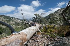 Hiking at Corsica Royalty Free Stock Photography
