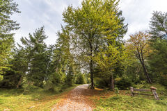 Hiking in the countryside. Picturesque German countryside. On the path to Kuchfluchwaterfalls Royalty Free Stock Images