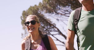 Hiking couple walking through forest. Slow motion of hiker couple walking through forest stock footage