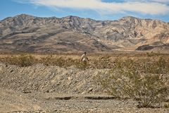 Hiking Death Valley California stock images