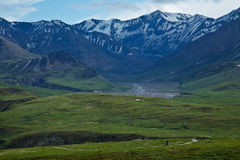 Hiking in Denali National Park Stock Images