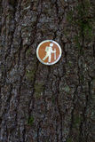 Hiking directional sign on tree Royalty Free Stock Photo